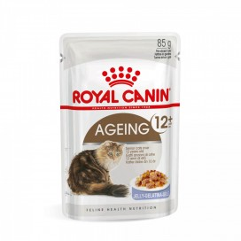 BOX 12 PZ. CAT AGEING 12+ IN JELLY GR. 85