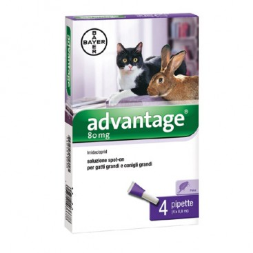 ADVANTAGE 80 SPOT ON GATTO E CONIGLI OLTRE I 4 KG