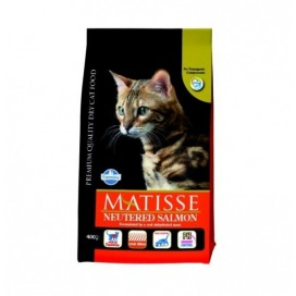 MATISSE ADULT NEUTERED SALMONE GR. 400