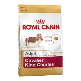 CAVALIER KING CHARLES ADULT KG. 1,5
