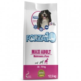 ADULT MAXI MANTENANCE PESCE KG. 12,5